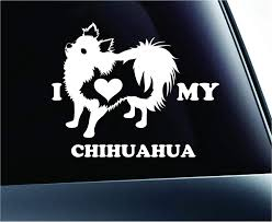 Amazon Com Expressdecor I Love My Long Haired Chihuahua Dog Symbol Decal Paw Print Dog Puppy Pet Family Breed Love Car Truck Sticker Window White Automotive