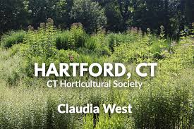 Phyto Studio-Hartford, Connecticut: Claudia West