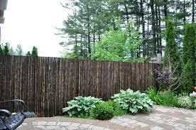 Buy Bamboo Fencing Poles Tropical Landscaping Bamboo Toronto
