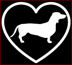Dachshund In Heart Vinyl Decal Laptop Sticker Car Window K 9 Wiener Dog Person Ebay