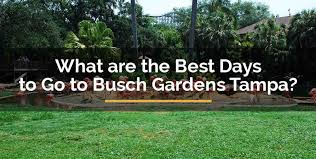 days to go to busch gardens tampa
