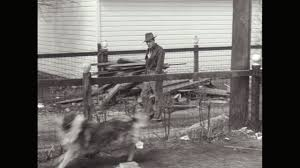 Ms Ts Dog Barking At Man From Behind Fence United States High Res Stock Video Footage Getty Images