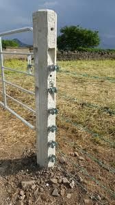Ox Strain Posts Octagonal Concrete Moore Concrete