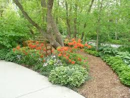 spring blooms picture of lauritzen