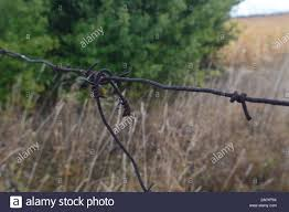 Barbed Wire Stretched On A Fence For Security Stock Photo Alamy