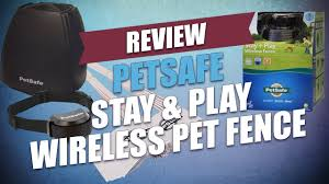 Petsafe Stay Play Wireless Pet Fence Review Youtube