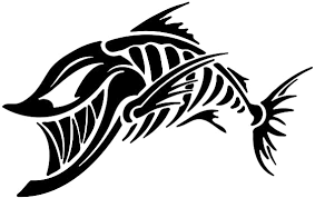 Bone Fish Decal Choose Size Color Bone Fish Sticker Yeti Cooler Decal Fish Sticker Fish Decal Fishing Stickers Cooler Decals Kayak Stickers Boat Decal Kayak Decal Boat Sticker Amazon Ca Electronics