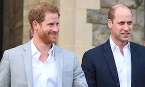 Prince Harry and Prince William will split future proceeds from Diana fund:  report