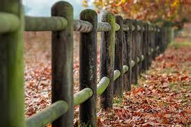 Painting Or Staining Fences A Comparison The Deluxe Coatings Blog