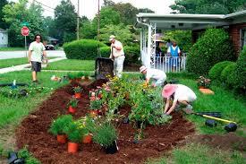 rain gardens reduce your stormwater