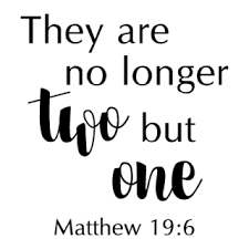 Matthew 19 Png Free Matthew 19 Png Transparent Images 106932 Pngio