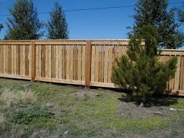 Camdon Park1 Jpg 800 600 Pixels Fence Design Backyard Fences Patio Fence