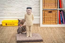 kim jong un cat scratching post