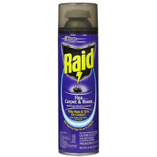 Raid Flea Killer Plus Carpet Room Spray 16 Oz 1 Lb 454 G Rite Aid