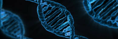 what is it and how does dna testing for