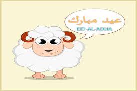 أجمل صور عيد الأضحى المبارك 2019 بطاقات تهاني بالعيد عيون مصر
