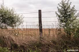 Old Wooden Post With Three Strands Of Barbed Wire And Metal Fencing Buy This Stock Photo And Explore Similar Images At Adobe Stock Adobe Stock