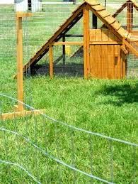 Movable Chicken Fencing