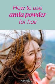 amla powder for hair health growth and