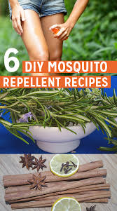 6 homemade mosquito repellent recipes