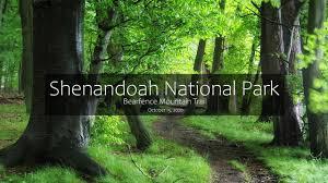 Shenandoah National Park Bearfence Trailhead Hike No Rock Scrambling Youtube