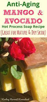 anti aging super moisture soap recipe