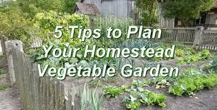 5 tips to plan your vegetable garden