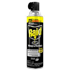 raid wasp hornet 33 17 5 oz