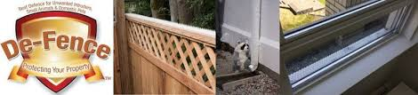 De Fence Against Raccoons And Other Rodents Pigeon Patrol