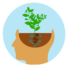 Allowing your brain to flourish through growth mindset