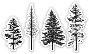 Amazon Com Gt Graphics Express Pine Trees Set Of 4 4 Each Vinyl Stickers For Car Laptop I Pad Waterproof Decals Home Kitchen