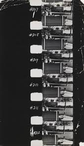 Abraham Zapruder / Life Magazine, Time Inc.. Stills from the JFK  Assasination Film. November 22, 1963 | MoMA