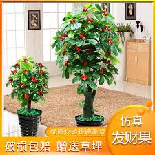 fake tree fruit quat bonsai plant