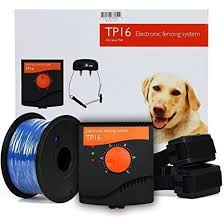 Tp16 Electronic Fence 2 Dogs Our Range Of Dog Gear For Sale