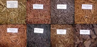 Get Termites In Mulch Around House Background