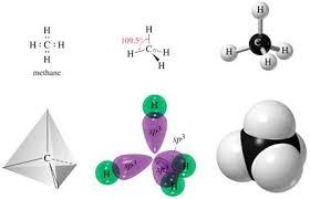 Resultado de imagen de Moéculas de Carbono