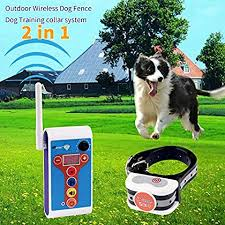 10 Best Wireless Dog Fence System Reviews Buying Guide 2020 Petdogsworld