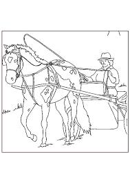 Kleurplaten En Zo Kleurplaat Van Paarden