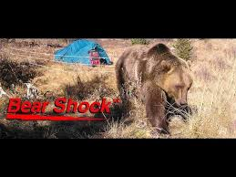 Bear Shock Ultra Lightweight Bear Electric Camp Fence By Udap Industries Inc Youtube