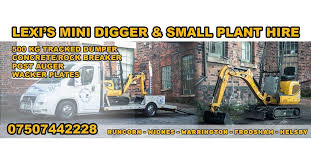 Lexis Mini Digger Hire In Wa7 Park For 100 00 For Sale Shpock