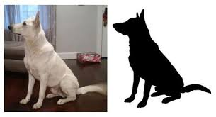 Custom Pet Silhouettes 0053 Dog Silhouettes Cat Silhouettes Bird Si Wall Decal Studios Com