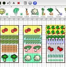 square foot gardening layout