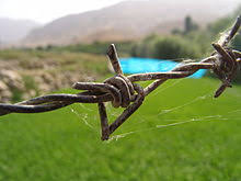 Barbed Wire Wikipedia