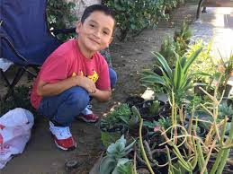 8-Year-Old Boy Starts Plant Business to Help Family
