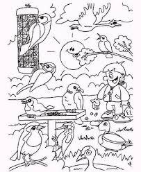 Vogels In De Winter Thema Vogels In De Winter Winter
