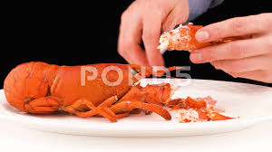 Man hands using the lobster cracker to ...