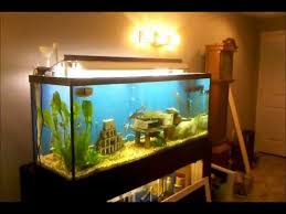 diy fish tank canopy you
