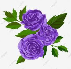 زهرة الارجوان أزهر سهم التوجيه تصوير الوها فني خلفية Png
