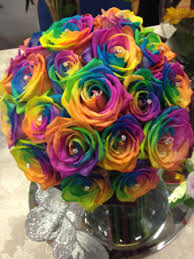 rainbow roses you definitely will find