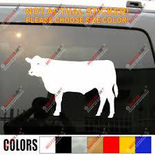 Angus Cattle Car Decal Sticker Bull Cow Ebay